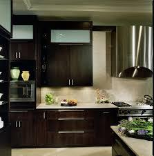 modern kitchen built in appliances contemporary-kitchen