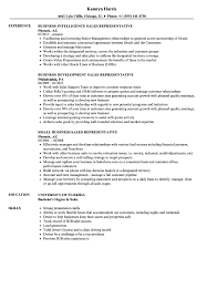 Sales Business Sales Representative Resume Samples Velvet Jobs