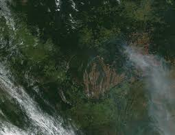 hazards of deforestation fires and deforestation in natural hazards fires and deforestation in middot the essay writer