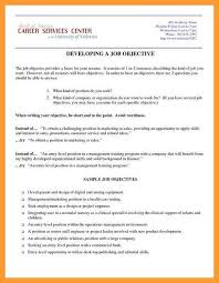 Should You Have An Objective On A Resume 12 13 Resume Objective Or Summary Examples Aikenexplorer Com