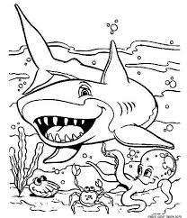 Small Picture Sea shark coloring pages to print