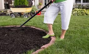 best mulch for garden. Brilliant For Which Type Of Mulch Is Best For Your Garden In For Garden 1