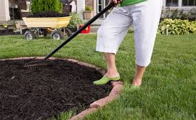 which type of mulch is best for your garden