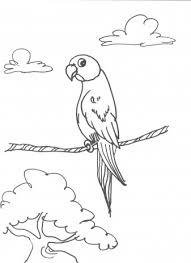 Vogel Kleurplaten