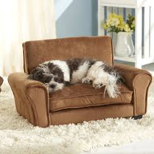 pet bed furniture. Chic Pet Furniture Youu0027ll Love | Wayfair Dog Bed
