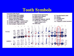 Dental Charting Document Clinical Findings Baseline For