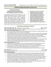 Director Resume Examples Amazing Hr Director Resume Examples Updated Executive Director Resume