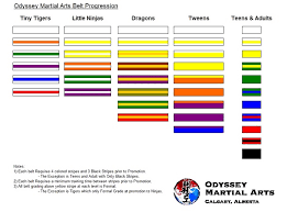 What Is A Progression Chart Odyssey Martial Arts Belt Progression