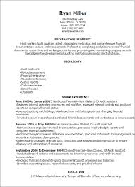 Resume Templates: Audit Assistant Resume