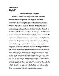view on america essay essays the american view