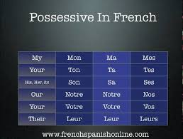 Possessive Pronouns In French Chart French Possessive Adjectives Lessons Tes Teach