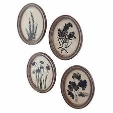 vintage style oval botanical prints set