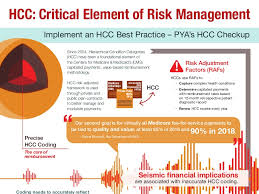 Hcc Coding Infographic Critical Element Of Risk Management