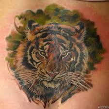 тигр добавлено головкин дмитрий