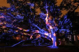 Botanical Gardens Nights Of Lights Gardenpartylights Hashtag On Twitter