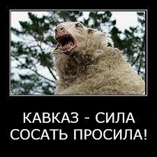 phd в России part  На защите докторской диссертации соискателя Камаза Кадыровича Навозова публично извинялись три официальных оппонента научный консультант учёный секретарь