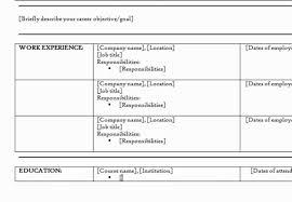 Resume Combination Resume Template Outstanding Combination Resume