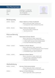 Bewerbungsmuster F R Informatiker Lebenslauf Designs