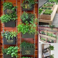 Small Picture Inspiring Idea Outdoor Herb Garden Kit Delightful Design Condo Kit