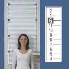 Wall Height Chart Growth Chart Quickmedical Qm2346