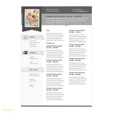 Mac Pages Resume Templates Simple Apple Pages Resume Template Unique ...