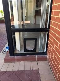 pet doors in glass doors 4 pawz