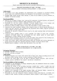 sample financial controller resume 2 sample resume financial controller  position