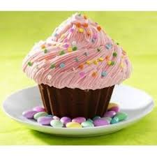 19 Best Giant Cupcake Pan Images Cupcake Cookies Giant Cupcake