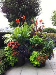 Small Picture Stunning Container Garden Ideas for Landscape Tropical design