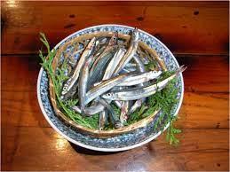 キビナゴ で 釣れる 魚