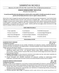 Best Executive Resume Samples Sales Executive Resume Template Lovely ...