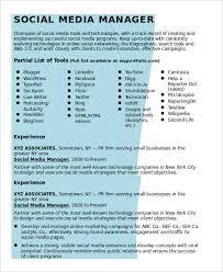 Social Media Resume Magnificent 28 Social Media Resume Templates PDF DOC Free Premium Templates