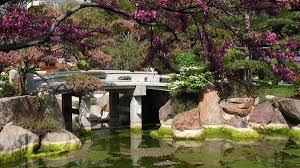 a japanese style pond with bridge in Monaco
