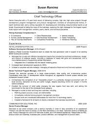 Examples Of Resume Profiles Inspirational Sample Resume Profiles Sample Resume Profiles Elegant 22