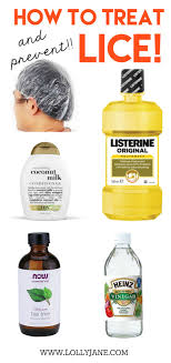 Best 25 Head lice prevention ideas on Pinterest
