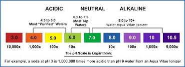 Water Test Chart House Window Glass Replacement Ph Water Testers