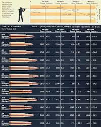 Caliber Trajectory Chart Pin On Guns