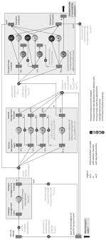 A Generalized Flow Chart Illustrates Transport Management On
