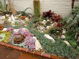 succulent plant design outdoor cactus garden design large outdoor succulents