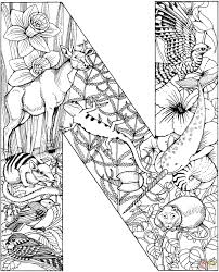 coloring pages letters of the alphabet awesome n coloring pages of coloring pages letters of the