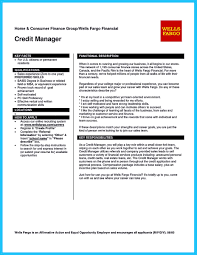 Sample Resume For Credit Manager Cool Credit Analyst Resume Example From Professional 7