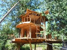315 Best TREE HOUSE ARVORISMO Images On Pinterest  Treehouses Treehouse Byron Bay