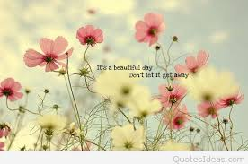 Beautiful Day Quotes Best Of Today It's A Beautiful Day