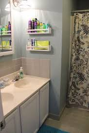 Cabinet Designs For Bathrooms Awesome Design Inspiration