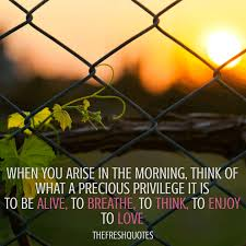 Quotes On Beautiful Morning Best Of 24 Beautiful Good Morning Quotes And Wishes TheFreshQuotes