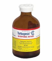 Torbugesic Dosage Chart Torbugesic Equine Zoetis Us