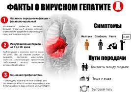 Вирусные гепатиты А и Е Причины симптомы и лечение Журнал Медикал Вирусные гепатиты А и Е
