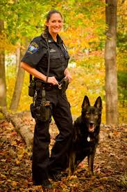 Best 25 K9 police ideas on Pinterest Police dogs Police dog.