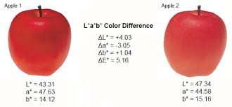 Identifying Color Differences Using L A B Or L C H Coordinates