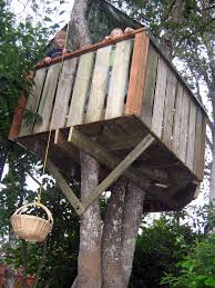 Picture of How to Build a Treehouse